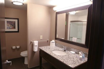 Bathroom Sink | Hampton Inn Lewiston-Auburn
